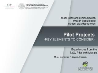 Pilot Projects -KEY ELEMENTS TO CONSIDER-