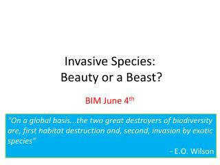 Invasive Species:  Beauty or a Beast?