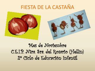 FIESTA DE LA CASTA A      Mes de Noviembre C.E.I.P. Ntra. Sra. del Rosario Hell n 2  Ciclo de Educaci n Infantil