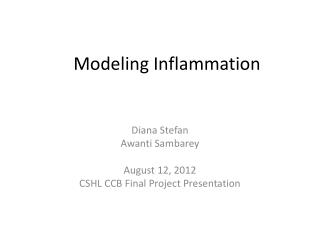 Modeling Inflammation