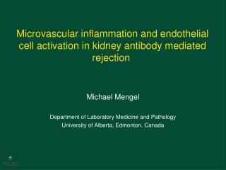 Microvascular  inflammation and endothelial cell activation in kidney antibody mediated rejection