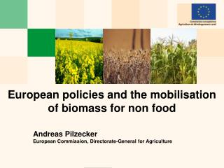 European policies and the mobilisation of biomass for non food