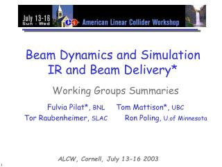 Beam Dynamics and Simulation IR and Beam Delivery