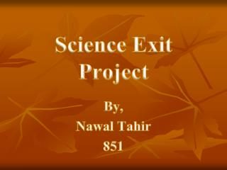 Science Exit Project