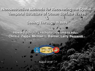 Nondestructive Methods for Recovering the Spatial- Temporal Structure of Ocean Surface Waves &