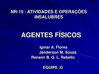 NR-15 : ATIVIDADES E OPERA  ES INSALUBRES