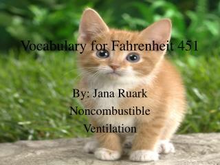 Vocabulary for Fahrenheit 451