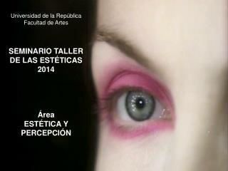 Universidad de la Rep�blica  Facultad de Artes SEMINARIO TALLER DE LAS EST�TICAS  2014