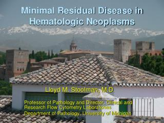 Minimal Residual Disease in Hematologic Neoplasms