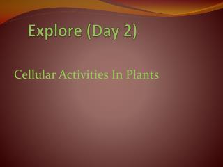 Explore (Day 2)