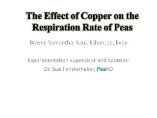 The Effect of Copper on the Respiration Rate of Peas