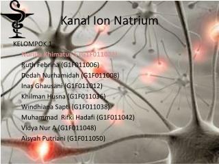Kanal Ion Natrium