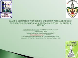 CAMBIO CLIMATICO Y GASES  DE EFECTO INVERNADERO (GEI )