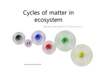 Cycles of matter in ecosystem