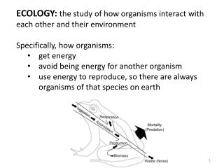 ECOLOGY:  the study of how organisms interact with each other and their environment