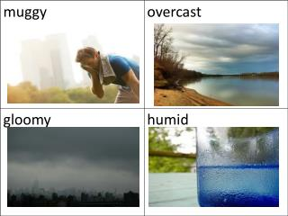 Weather seasons with words