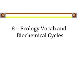 8 – Ecology Vocab and Biochemical Cycles