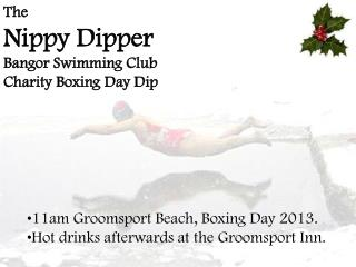 The  Nippy Dipper Bangor Swimming Club Charity Boxing Day Dip