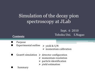 Simulation of the decay  pion  spectroscopy at  JLab