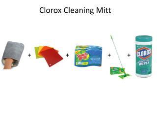 Clorox Cleaning Mitt