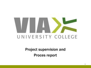 Project supervision and Proces report