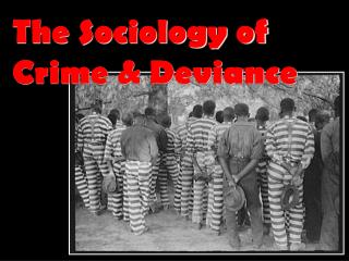 The Sociology of Crime & Deviance