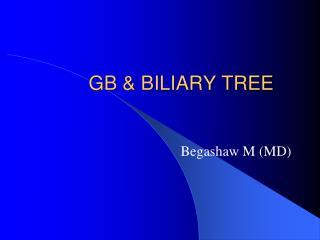 GB & BILIARY  TREE