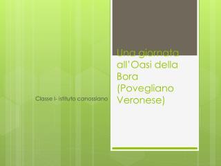 Una giornata all'Oasi della Bora (Povegliano Veronese)
