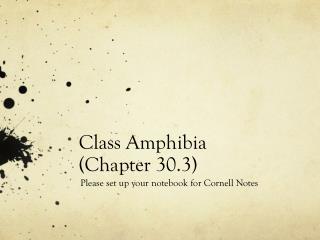 Class  Amphibia (Chapter 30.3)