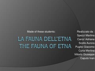 La fauna dell�Etna The fauna  of  Etna