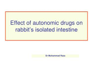 Effect of autonomic drugs on rabbit�s isolated intestine