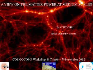 A VIEW ON THE MATTER POWER AT MEDIUM SCALES                MATTEO VIEL