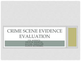 Crime Scene Evidence Evaluation