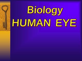 Biology  HUMAN EYE