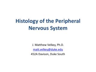 Histology of the Peripheral Nervous System