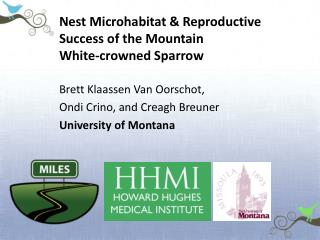 Nest Microhabitat & Reproductive  Success of the Mountain  White-crowned Sparrow