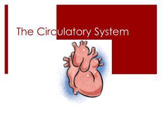 The Circ ulatory System