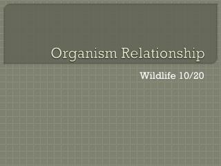 Organism Relationship