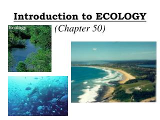 Introduction to ECOLOGY (Chapter 50)