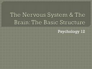The Nervous System & The Brain: The Basic Structure