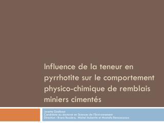Influence de la teneur en pyrrhotite sur le comportement physico ...