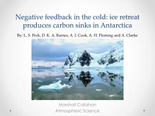 Negative feedback in the cold: ice retreat produces carbon sinks in Antarctica