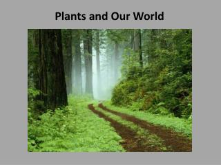 Plants and Our World