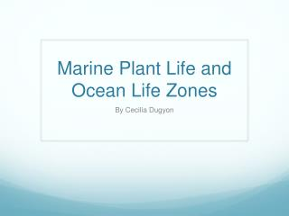 Marine Plant Life and Ocean Life Zones