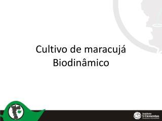 Cultivo de maracujá Biodinâmico