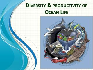 Diversity & productivity of  Ocean Life