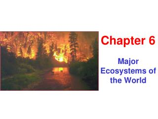 Major Ecosystems of the World