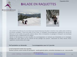 B ALADE EN RAQUETTES