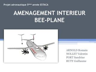 AMENAGEMENT INTERIEUR BEE-PLANE