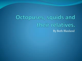 Octopuses, squids and their relatives.